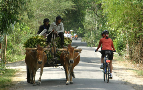 wheels_mekong_12